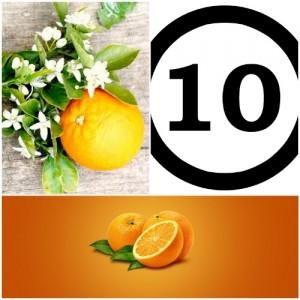 Naranjas 10 Orange3