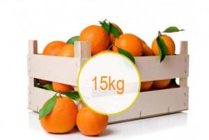 comprar naranjas online 15
