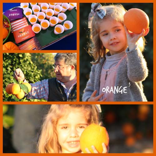 familia orange3