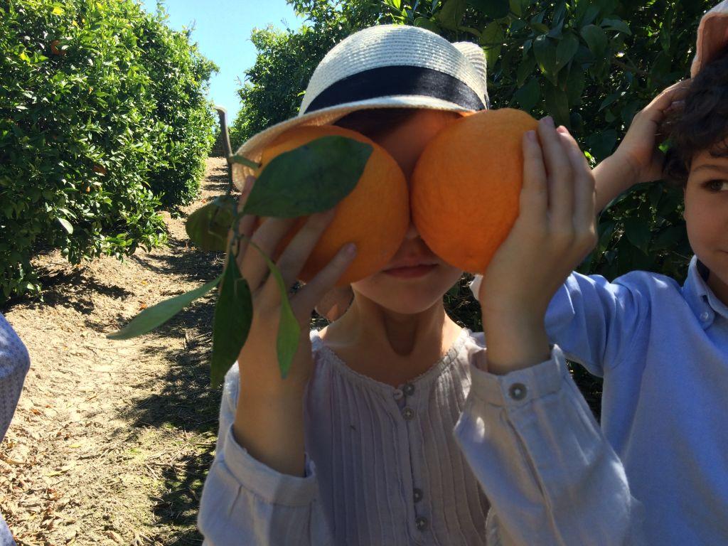 Niñas orange3